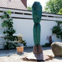Protection hivernale pour palmiers et arbres exotiques