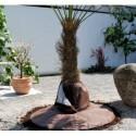 Protection hivernale des racines pour palmiers & arbres