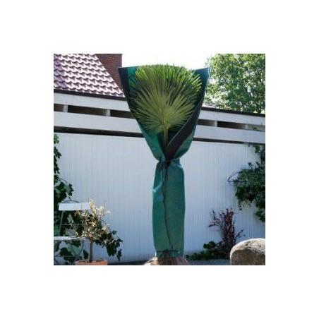 Protection hivernale tronc pour palmiers & arbres