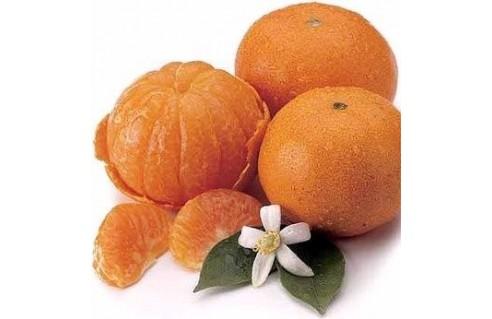 Clémentinier (Citrus clementina - syn. C. reticulata)