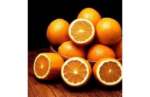 Oranger (Citrus sinensis)